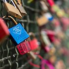 The Love Locks by Markus Landsmann