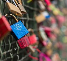 The Love Locks by Markus Landsmann