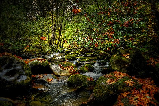Fall On The North Fork by Charles & Patricia   Harkins ~ Picture Oregon