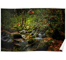 Fall On The North Fork Poster