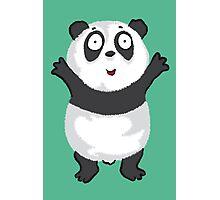 Panda Hug Photographic Print