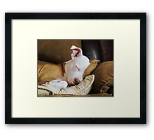 Snuggle Bug Framed Print