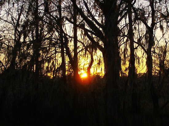 Eerie Sunset 1 by Dawne Dunton