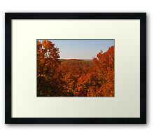 Blazing Colors Framed Print