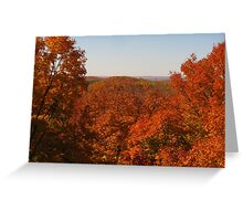 Blazing Colors Greeting Card