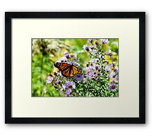 Having Lunch with Royality II Framed Print