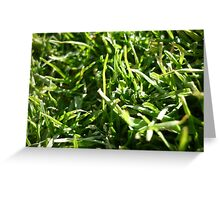 A Grassy Patch Greeting Card