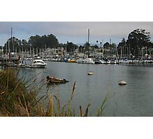 SANTA CRUZ HARBOR Photographic Print