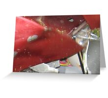 Little Red Crash Bird Greeting Card