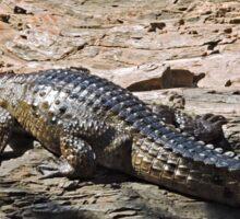 Crocodile, Ord River, Kimberley, Western Australia Sticker