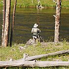 Fly fishing in Yellowstone by mcstory