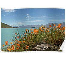 Lake Tekapo Poster