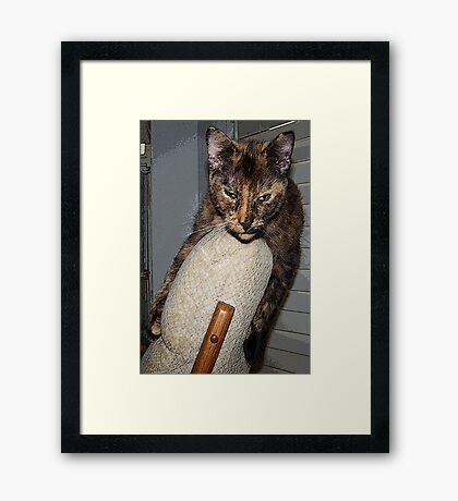 What You Saying, I've Done Nothing! Framed Print