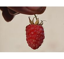 Rasp Berry. Photographic Print