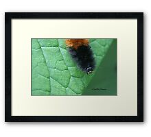 Hello You Framed Print