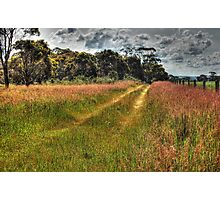 A Country Track #2 Photographic Print