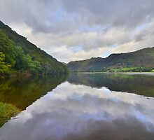 The Lake District: Brother's Water Reflections by Rob Parsons