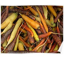 Colorful Carrots. Poster