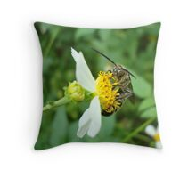 FLOWER WASP IN SPANISH NEEDLES Throw Pillow