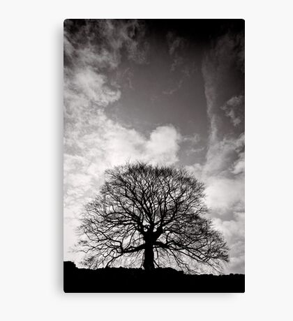 Tree of Triumph - portrait - Kenilworth - Great Britain Canvas Print