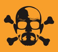 Breaking Bad Skull by natrule