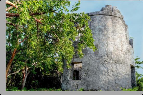 Blackbeard's Tower in Eastern Nassau, The Bahamas by 242Digital