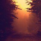 One Foggy Morning by Vintageskies
