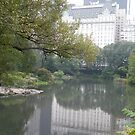 Plaza Hotel and Reflection, Central Park, New York by lenspiro