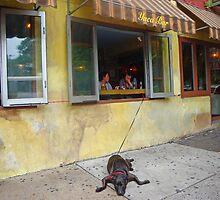 A sad dog  by Eugenia Gorac