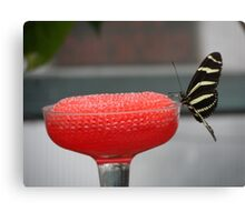 Black & Yellow Butterfly on Red Canvas Print
