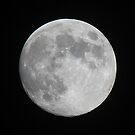 September Moon by Bob Hardy