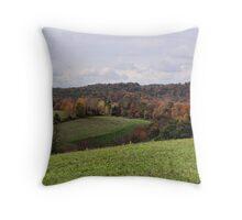 One reason why I love Autumn Throw Pillow