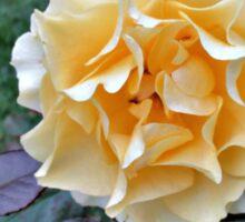 October Rose Sticker