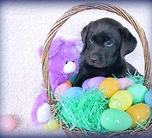 I don't understand but I like Easter! by DennisThornton