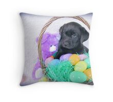 I don't understand but I like Easter! Throw Pillow