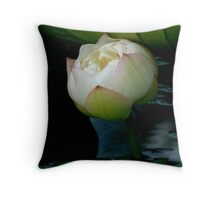 Under the green canopy   Throw Pillow