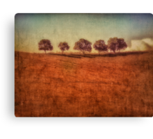 country dream Canvas Print
