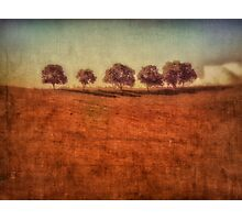 country dream Photographic Print
