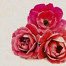 Love, Honor & Cherish by Sharon Woerner