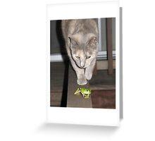 Feline on the Hunt ?  Greeting Card