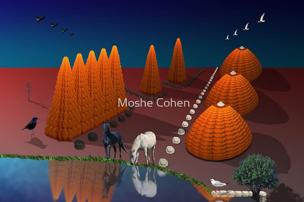 Feminine and Masculine landscape by Moshe Cohen