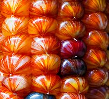 Ornamental Indian Maize Closeup by Kenneth Keifer