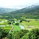 Hanalei valley lookout by kcy011