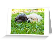 I don't think they can see us now! Greeting Card