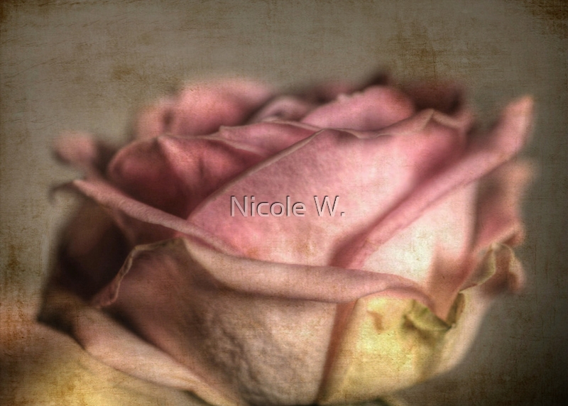 Dedicated to Irene Burdell and Liesbeth. by Nicole W.
