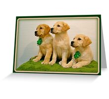 Is that St. Patrick! Greeting Card