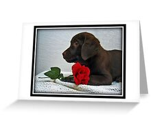 Be my Valentine! Greeting Card