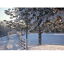 Frosty Colorado Morning Photographic Print