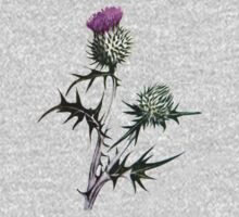 Scottish Thistle T-Shirt T-Shirt
