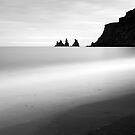 Vik - Iceland by Dave  Miller